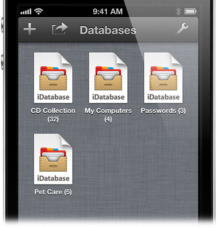 iDatabase-for-iPhone-Open-View2